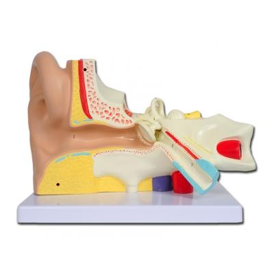 VALUE EAR - 3 díly - 3X